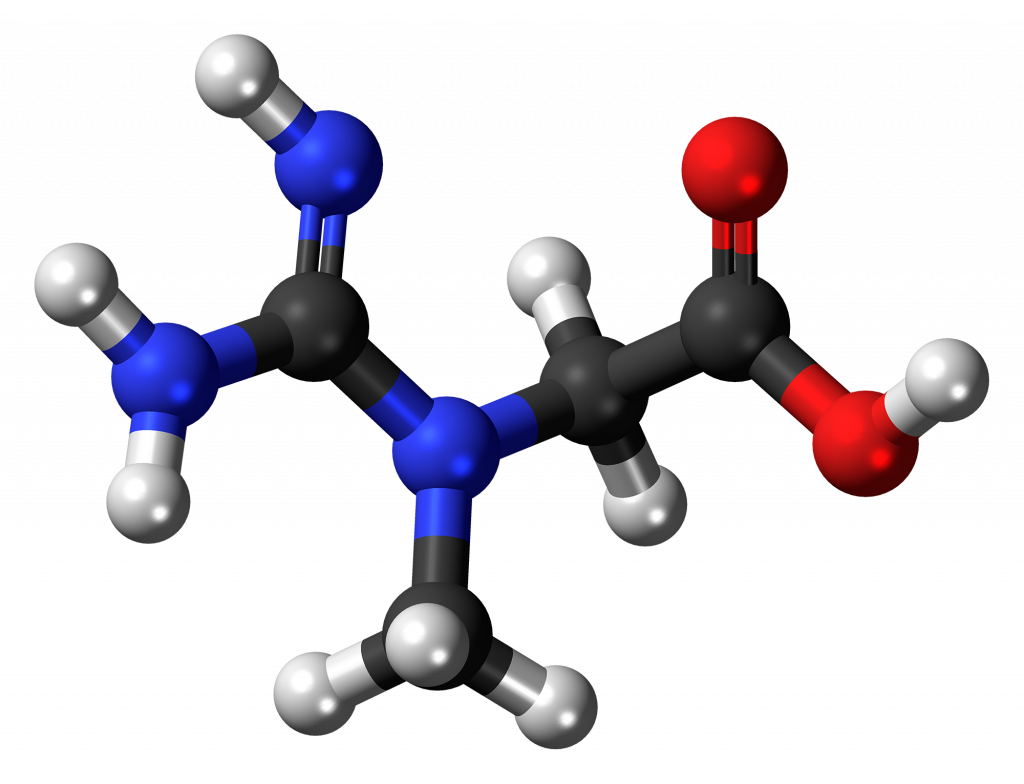 molecular stucture of creatine