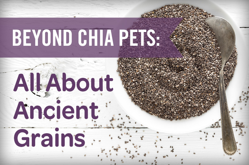 beyond chia pets: all about ancient grains bowl of chia seeds with silver spoon