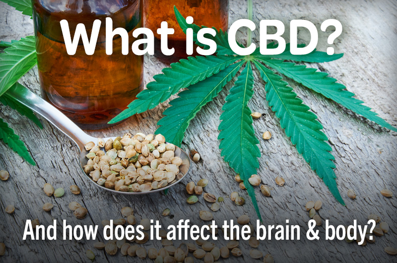 what is CBD and how does it affect the brain and body